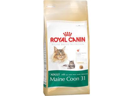 Royal Canin Maine Coon 31 для кошек породы мейн-кун старше 15 месяцев фото