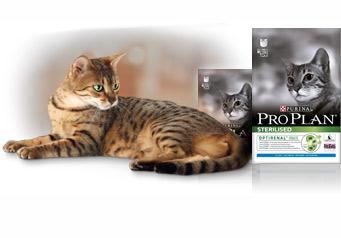 Корм Pro plan для кошек фото