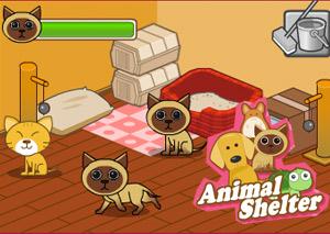 Приют для животных (Animal Shelter) фото