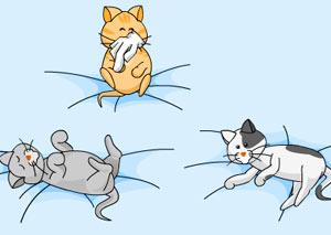 Пощекочи кошек фото