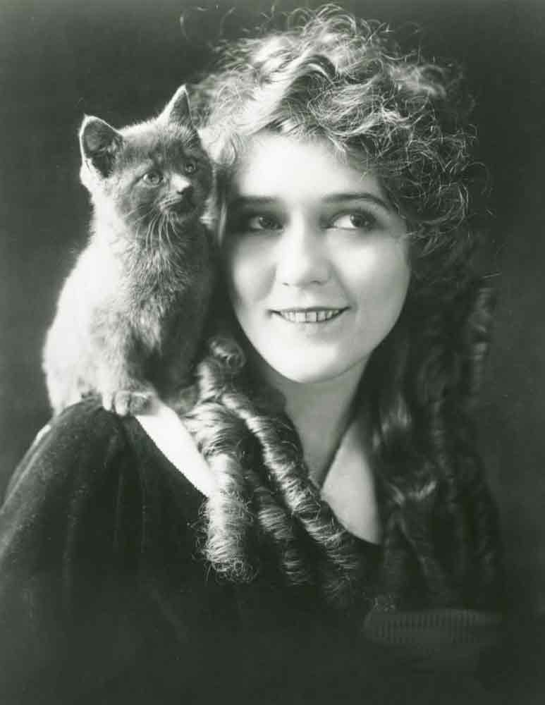 Мэри Пикфорд и её кошка фото