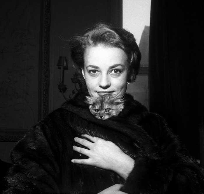 Жанна Моро с кошкой фото
