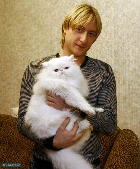 Евгений Плющенко и кот Пухлик фото