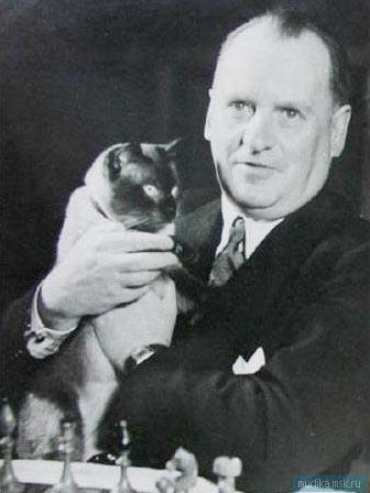 Александр Алехин и кот Чесс фото