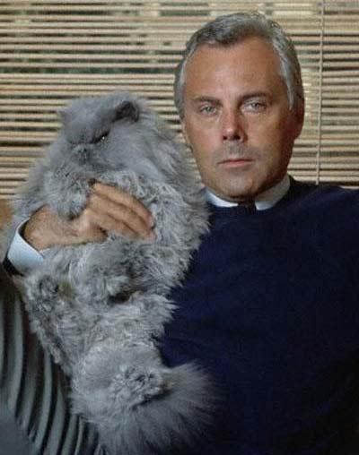 Джорджио Армани с кошкой фото