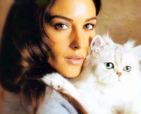 Моника Беллуччи и кошка фото