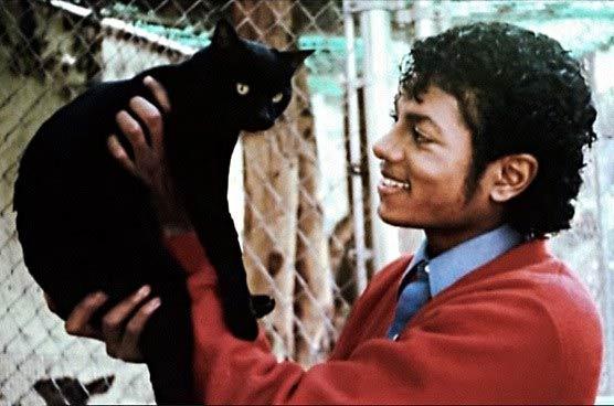 Майкл Джексон с кошкой фото
