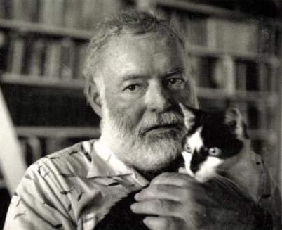 Эрнест Хемингуэй и его кошки фото