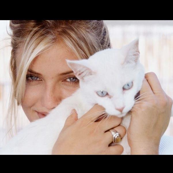 Кэмерон Диаз с кошкой фото