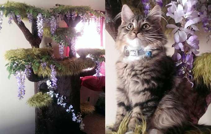Как построить потрясающий игровой домик для кошки в виде дерева фото