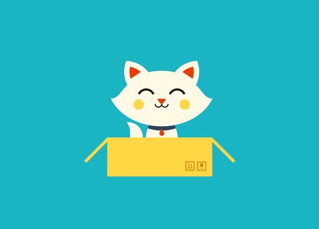 Смысл жизни кошек – коробки фото