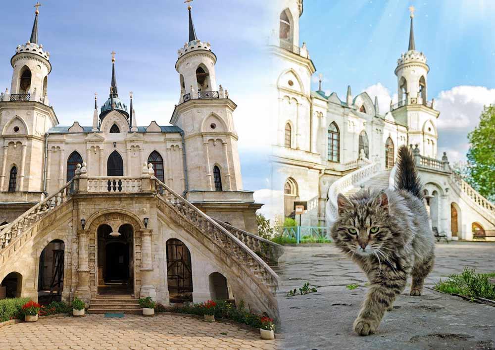 Истинный хозяин усадьбы Быково в Подмосковье обходит свои владения фото