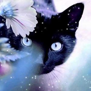 Ирина Муравьева-Кошка которая гуляла сама по себе фото