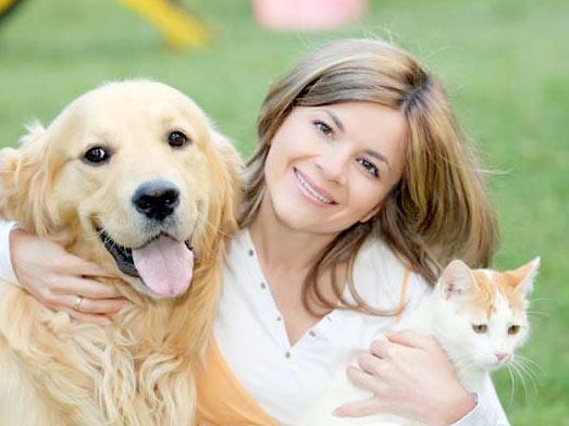 Кто умнее: владельцы кошек или собак? фото