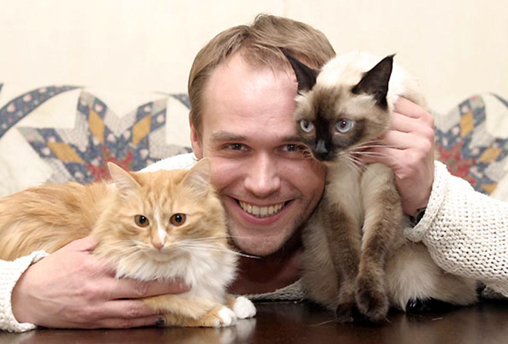 Любимые кошки знаменитостей фото
