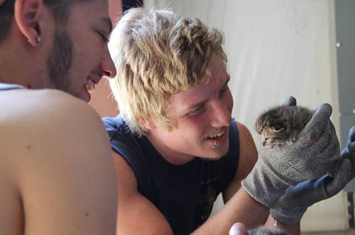 Работники по утилизации мусора спасли трех котят фото