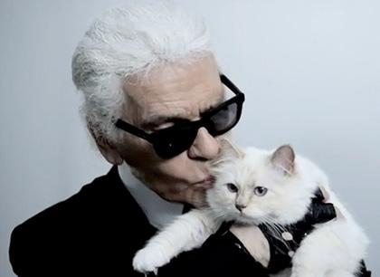 Модельер Карл Лагерфельд хочет жениться на своей кошке фото