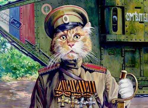 Военные коты от Александра Завалия фото