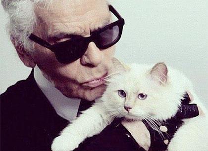Карл Лагерфельд и его кошка фото