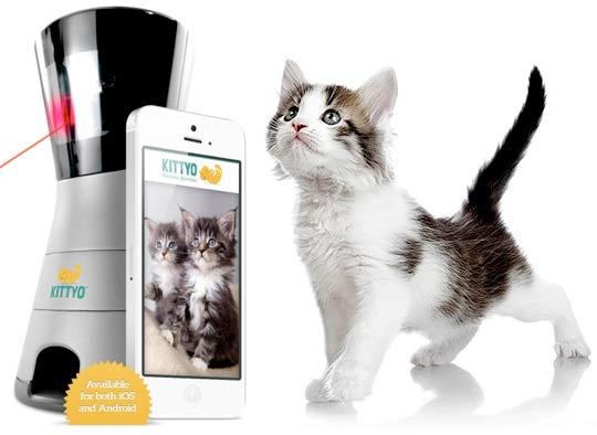 В США придумали устройство, которое позволяет поиграть с оставленной дома кошкой фото