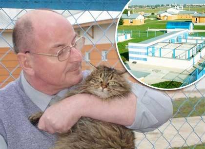 Немецкий союз защиты животных откроет в Одессе приют для кошек фото