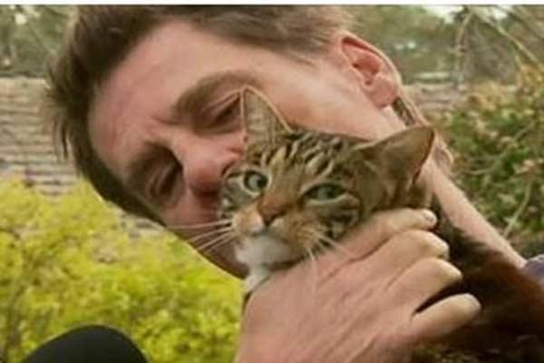 Кошка спасла своего хозяина во время пожара фото