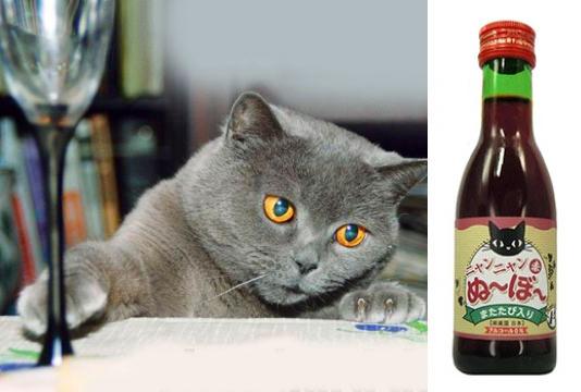 В Японии разработали специальное вино для кошек под названием «Мау-Мяу нового урожая» фото