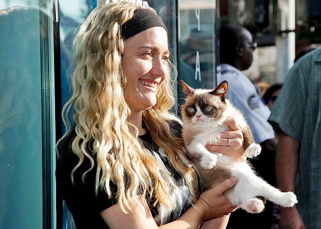 «Сердитая кошка», ставшая знаменитым интернет-мемом помогла своей хозяйке заработать целое состояние фото