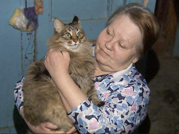 Кошка Маша перебудила весь подъезд, спасая двухмесячного мальчика фото