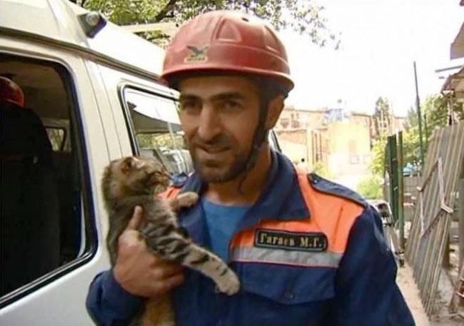 В Дагестане спасли кота, неделю просидевшего на дереве фото