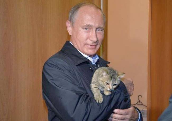 Президент России Владимир Путин посетил Хакаси и познакомился с кошкой Муркой фото