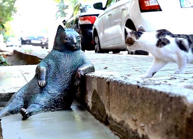 В Стамбуле поставили памятник коту, который любил задумчиво сидеть у бордюра фото