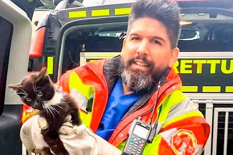 В Германии полицейские перекрыли участок автобана ради спасения котенка фото