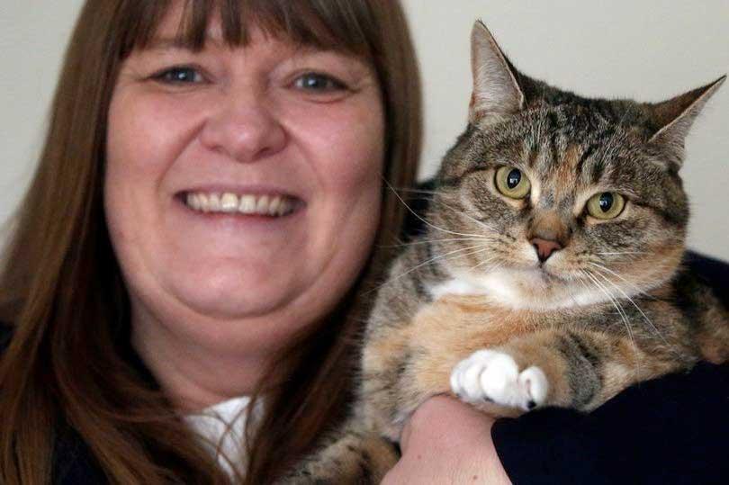 В Великобритании кошка дважды спасла женщину от гибели фото