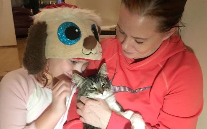 В Канаде кота случайно отправили по почте из Галифакса в Монреаль фото
