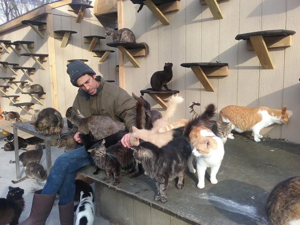 58-летний Крис Арсено рассказал как ему живется с 300 кошками фото