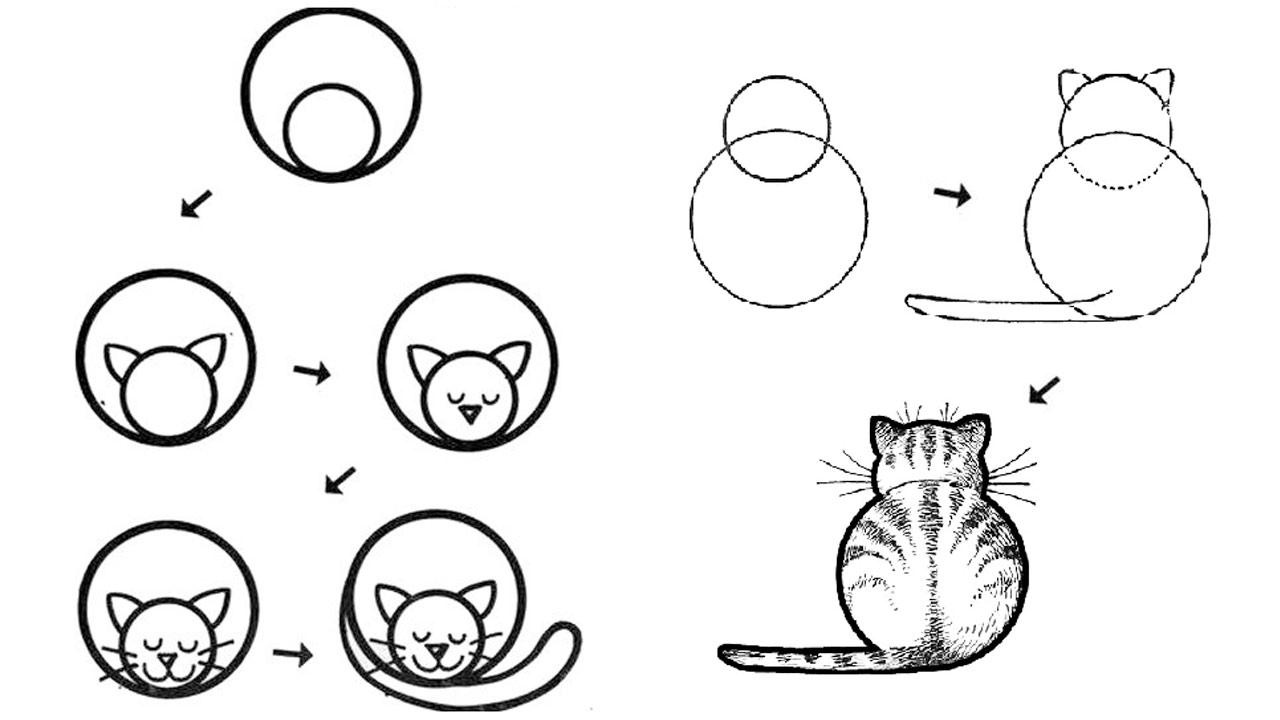 Рисунки по этапам для начинающих животные