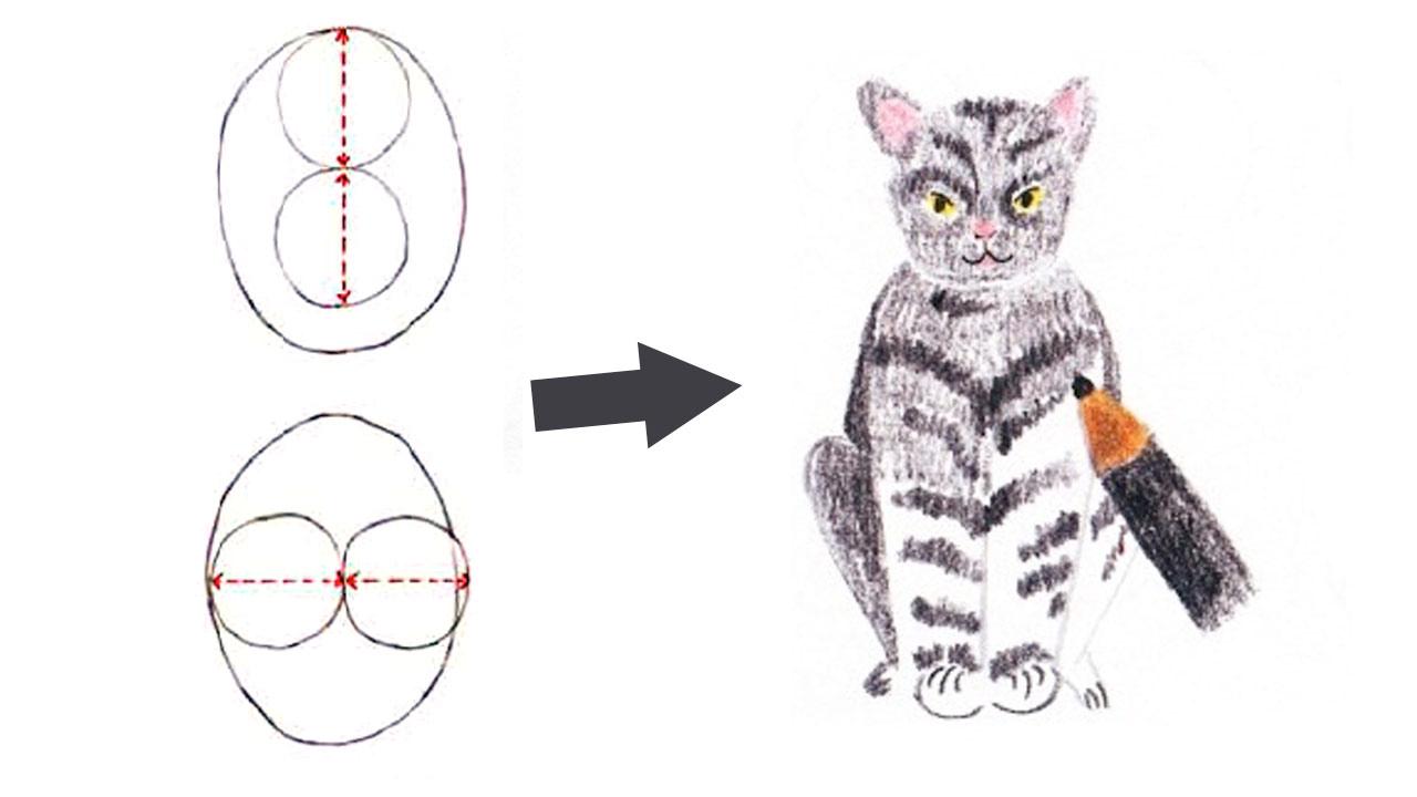 Поэтапный рисунок сидящей кошки в анфас фото