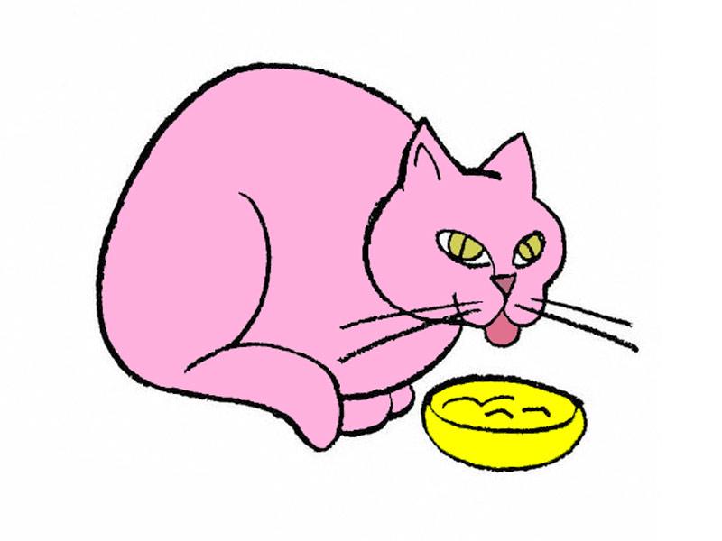 Рисуем поэтапно карандашом кошка, которая обедает фото