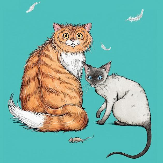 Сказка про кошку в картинках