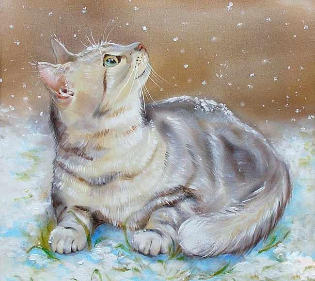 Утром кот принес на лапах первый снег фото