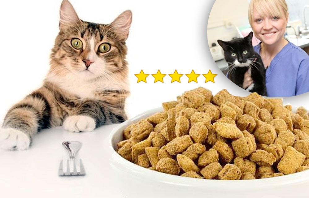 Какой корм выбрать для кошки? Советы ветеринаров фото