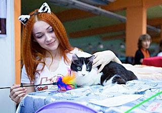 В Чебоксарах собрались самые кучерявые кошки фото