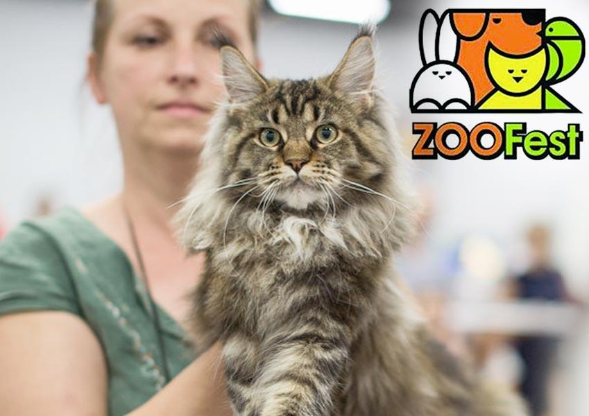 Выстака ZooFest-2018, 10-11 февраля фото