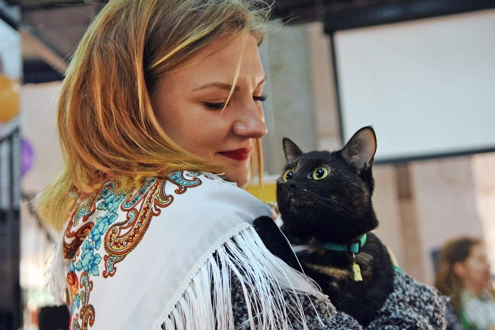 Тыквы и Коты - 2019: кошачий фестиваль для всей семьи возвращается фото